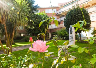 Jardín del Hospital Mare de Déu de la Mercè